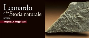 Leonardo_500