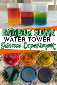 Rainbow-Sugar-Water-Tower-Pin